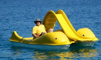 Rent a Paddle Boat in Vela Luka, Croatia