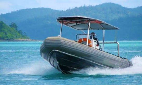 Charter 22' Silver Moon Rigid Inflatable Boat In Whitsundays, Australia