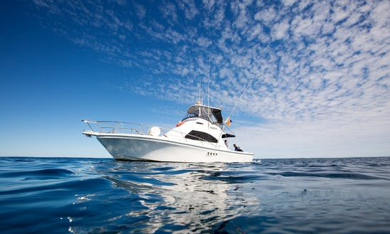 Charter 40' Wave Rider Motor Yacht In Exmouth, Australia