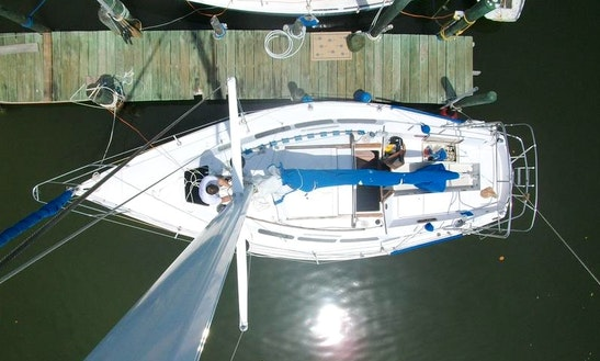 Catalina 30' Sloop Bare Boat Or Captained In La Paz