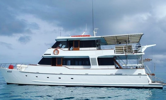 Charter 65' Mv Mikat Power Catamaran In Queensland, Australia
