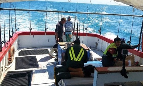 Enjoy Fishing In Wellington, New Zealand With Captain Pete