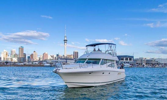 Enjoy Fishing In Auckland, New Zealand On Motor Yacht
