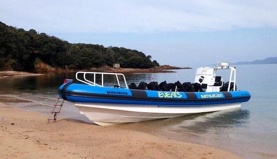 Charter 39' Rigid Inflatable Boat In Calcatoggio, France