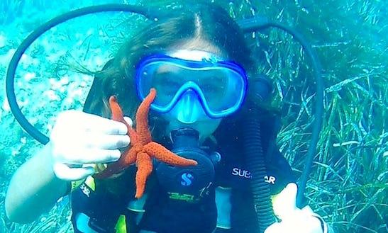 Enjoy Scuba Diving In Gattières, France