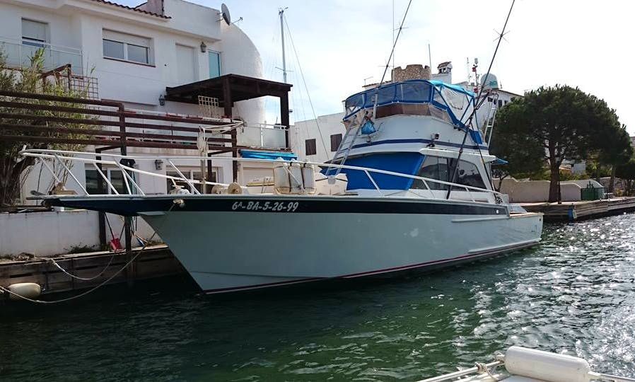 "Fishing Charter On 44ft ""Sail Fish"" Striker Alu-Yacht In Castelló d'Empúries, Spain"