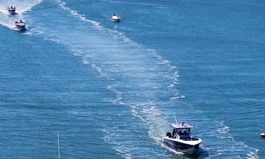 Lake Minnetonka Boat Rental