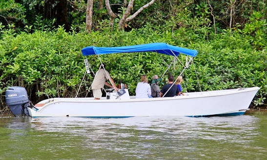 Charter A Center Console In Lower Daintree, Australia