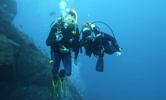 Enjoy Diving Trips In Velas, Portugal