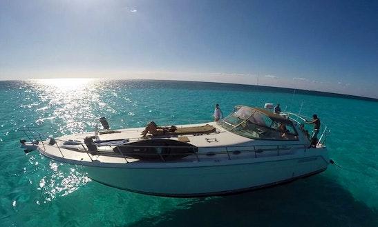 Motor Yacht Rental In Puerto Aventuras To Cozumel