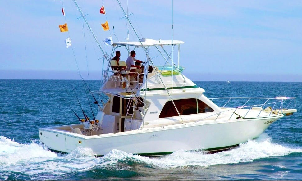 "Fishing Charter On 36ft ""Bucaner"" Bertram Yacht In Can Picafort, Spain"