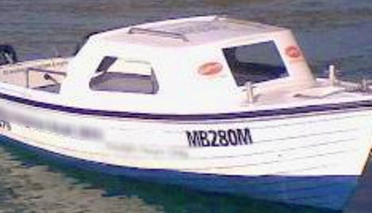 Enjoy Savage Dolfin Half Cabin For Hire In Mornington