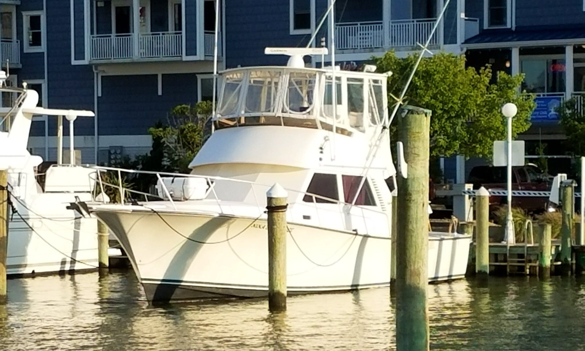 "Fishing Charter On 38ft ""Nina's Revenge"" Henriques Yacht In Ocean City, Maryland"