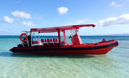 Rent A 300 Hp Suzuki Powered Rigid Inflatable Boat In Nouméa, New Caledonia