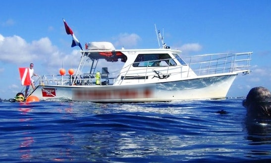 Dive Boat Ii - Diving Trips In Fort Lauderdale