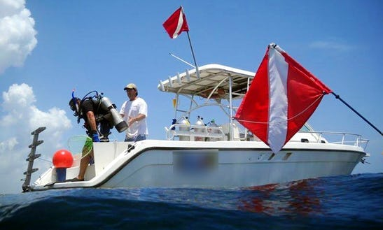 Diving Trips In Pompano Beach, Florida