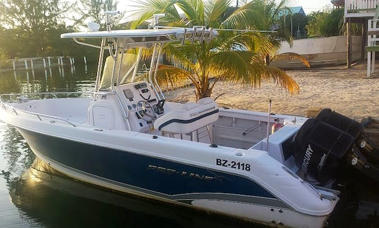 Center Console Rental In Placencia