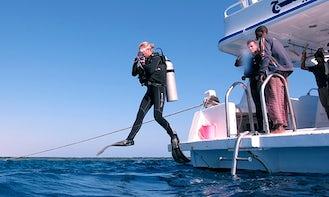 Enjoy Diving in Marsa Alam, Egypt