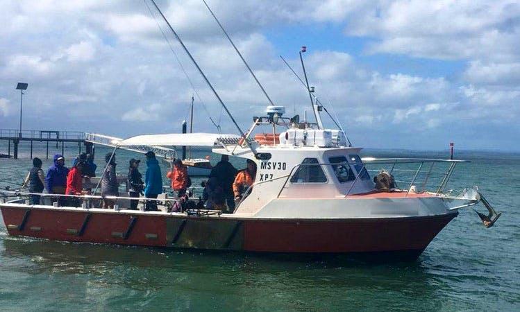 Enjoy Fishing in Rhyll, Victoria on 35' Wontama Trawler