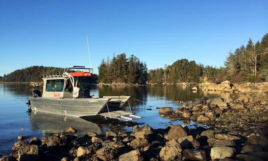 Enjoy Wildlife Tours On 26' Passenger Boat In Sitka, Alaska