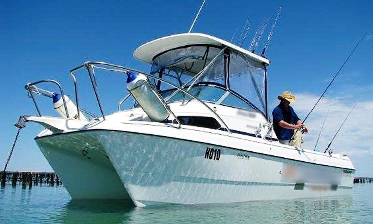 """Markham Dominator Shark Cat"" Fishing Trips in Coffin Bay"