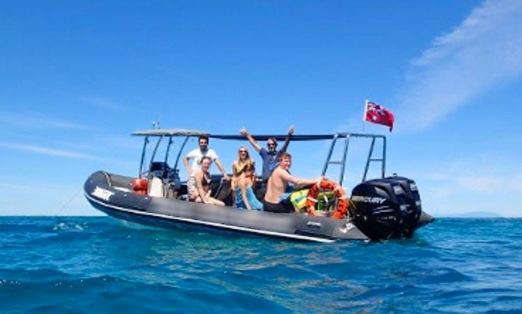 RIB Snorkel Trips in Mission Beach, Australia