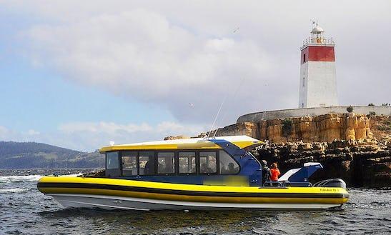 37' Boat Iron Pot Cruises In Hobart