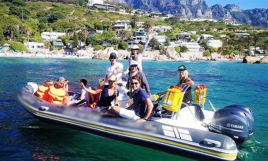 Rib Rental In Cape Town