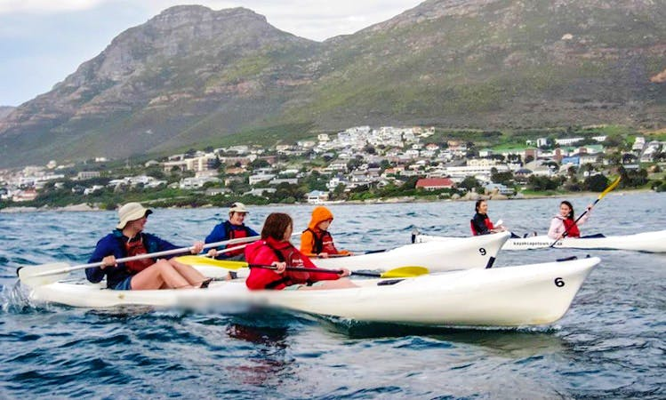 Guided Kayaking Trips in Cape Town, South Africa