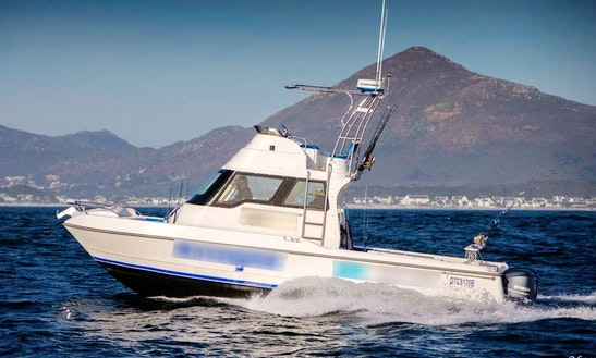 Enjoy Fishing In Cape Town, Western Cape On Power Catamaran