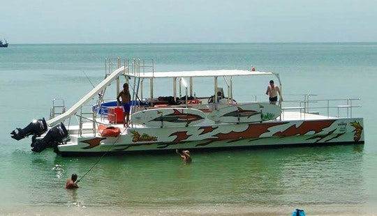 Twin-engine Party Pontoon For 12 People In Ko Samui, Thailand