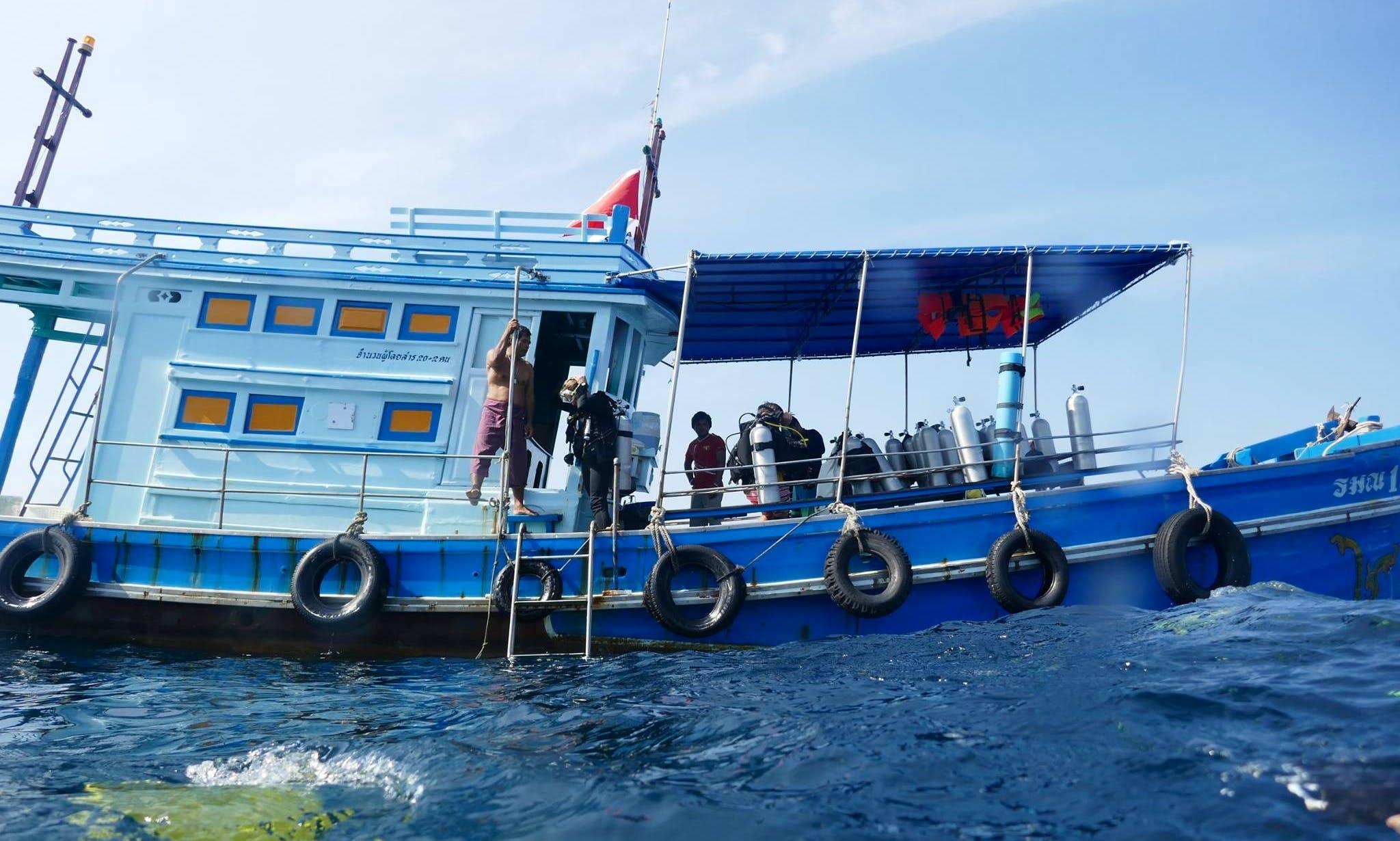 Enjoy Diving in Chang Wat, Surat Thani