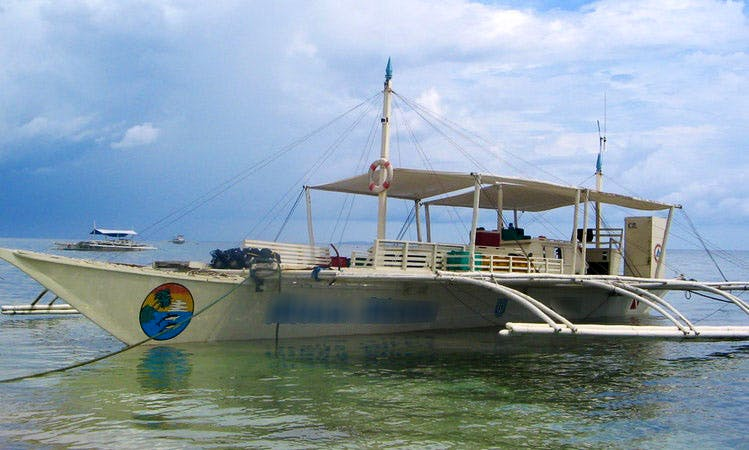 Big Boat Diving Trips in Bohol, Philippines