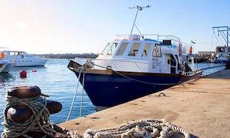 Whale Watching Boat Trip In Hermanus