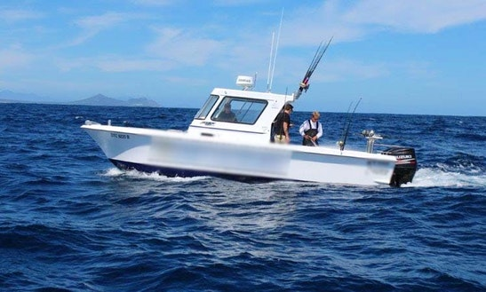Go Fishing In Cape Town, South Africa On 28' Devocean Sport Fisherman