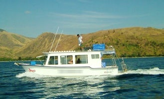 Discover Scuba Diving with Professional Guides in Olongapo, Philippines