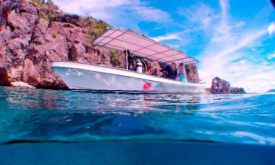 Diving Tour In Puerto Galera