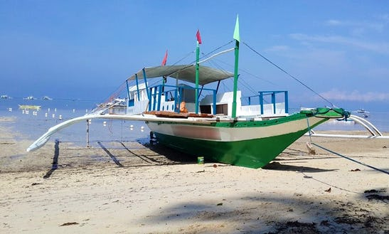 Diving Trips In Panglao
