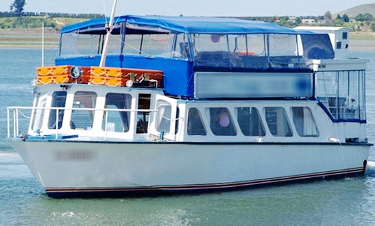 Passenger Boat Party Trips In Tauranga, New Zealand