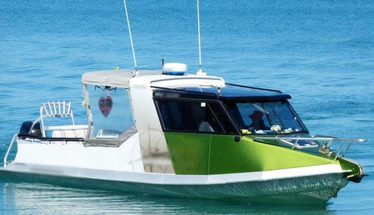 Charters And Water Taxis In Abel Tasman National Park