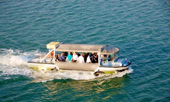 Land & Sea Tours On The