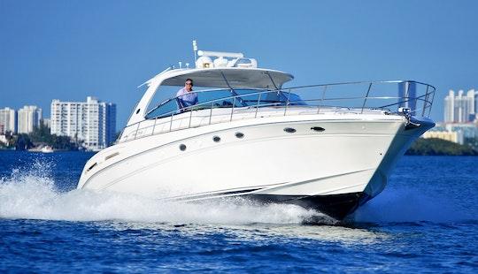 Charter 54' Sea Ray In Miami Beach, Florida