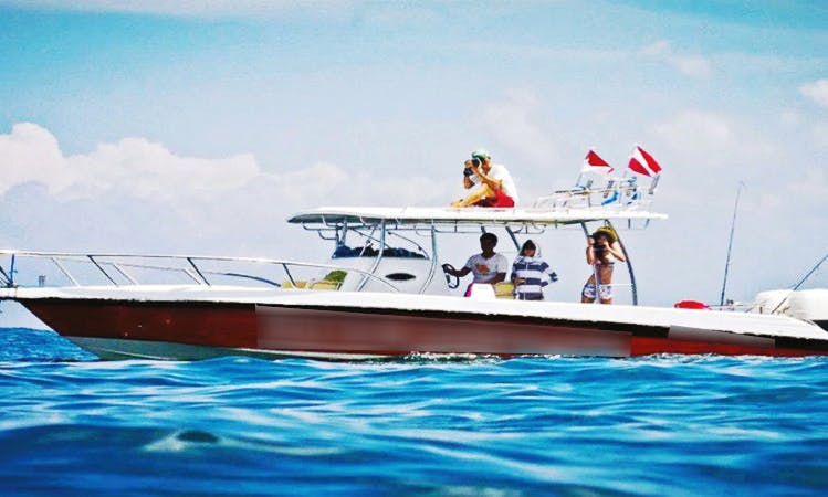 Snorkeling Tours in Kuta, Indonesia