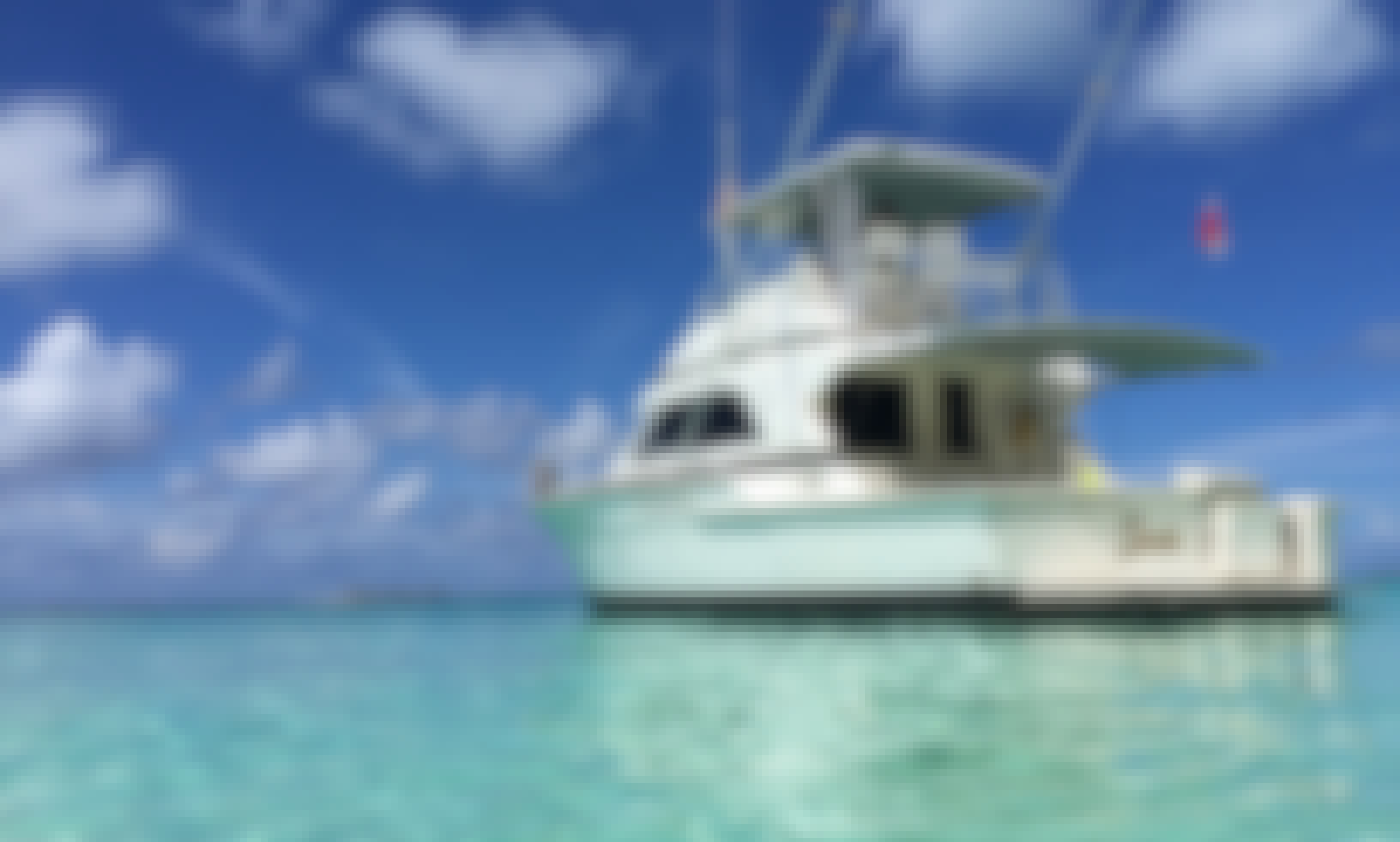 Snorkel Charter 43' Bertram  Save 20% Book now