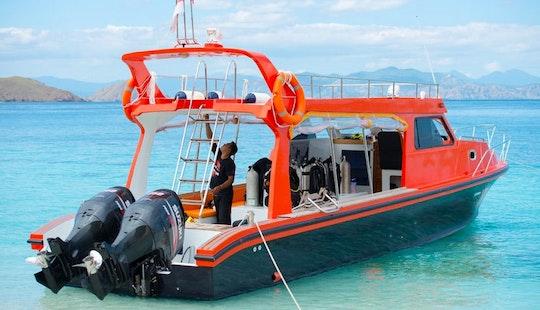 Dive Boat (speedboat) Rental In Komodo