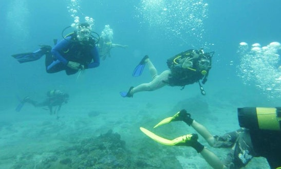 Enjoy Scuba Diving In Johannesburg, South Africa
