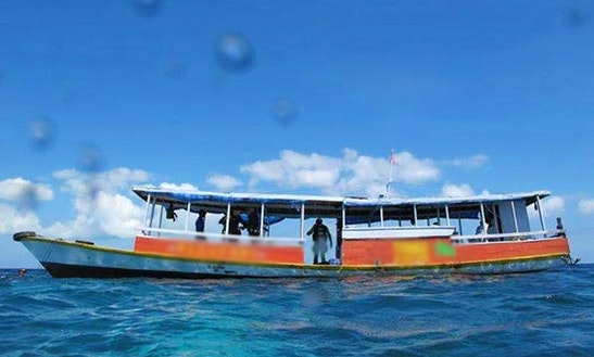 Boat Diving Trips In Wakatobi Island