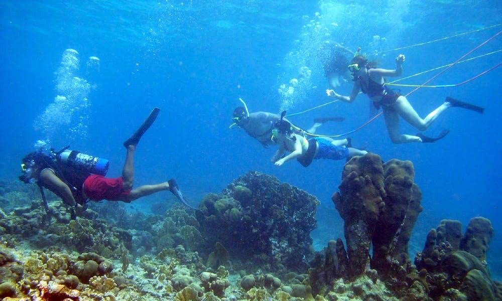 Fun Dive (Snuba) in Cambodia