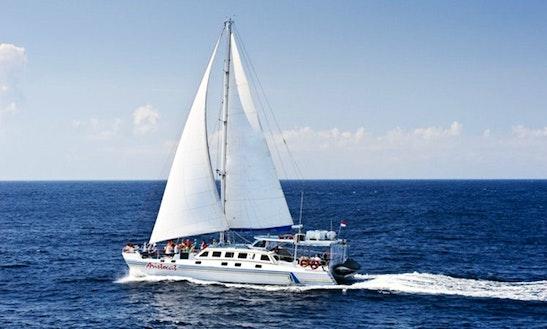 Enjoy Diving In Nusa Lembongan On A Day Cruise