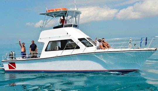 Diving Trips In Key West, Florida